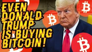 EVEN DONALD TRUMP Is BUYING BITCOIN! Why A 50X BTC BLAST Has ALL MILLIONAIRES Buying TONS Of BTC!