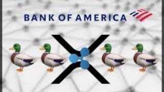 Bank Of America preps for XRP & Ripple adoption